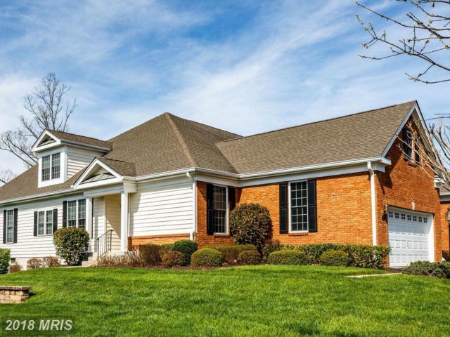 5451 Trevino Drive, Haymarket, VA 20169 (#PW10219625) :: Keller Williams Pat Hiban Real Estate Group