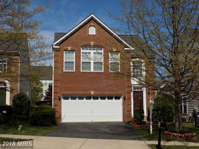 16078 Sheringham Way, Gainesville, VA 20155 (#PW10221904) :: The Putnam Group