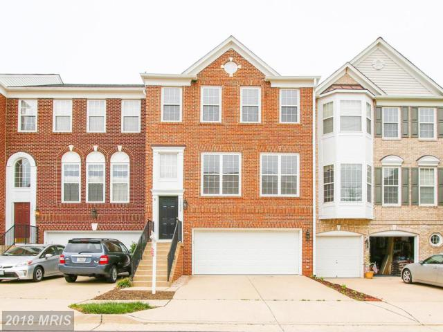15032 Clementine Way, Haymarket, VA 20169 (#PW10223939) :: Advance Realty Bel Air, Inc