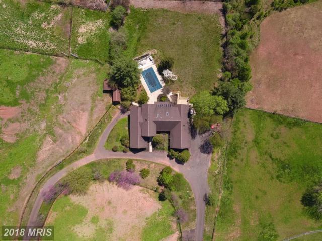 9741 Windy Hill Drive, Nokesville, VA 20181 (#PW10231348) :: Keller Williams Pat Hiban Real Estate Group