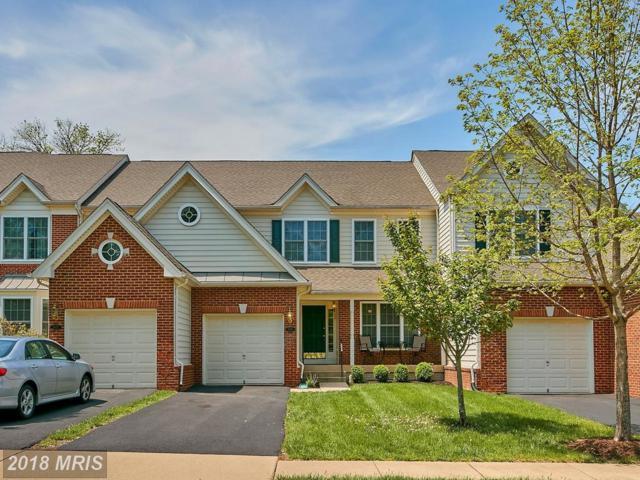 5570 Arrowfield Terrace, Haymarket, VA 20169 (#PW10234802) :: Colgan Real Estate