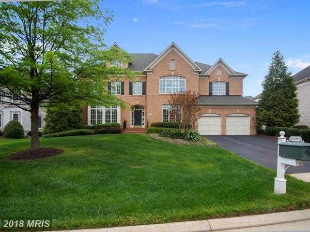8441 Link Hills Loop, Gainesville, VA 20155 (#PW10235978) :: The Gus Anthony Team