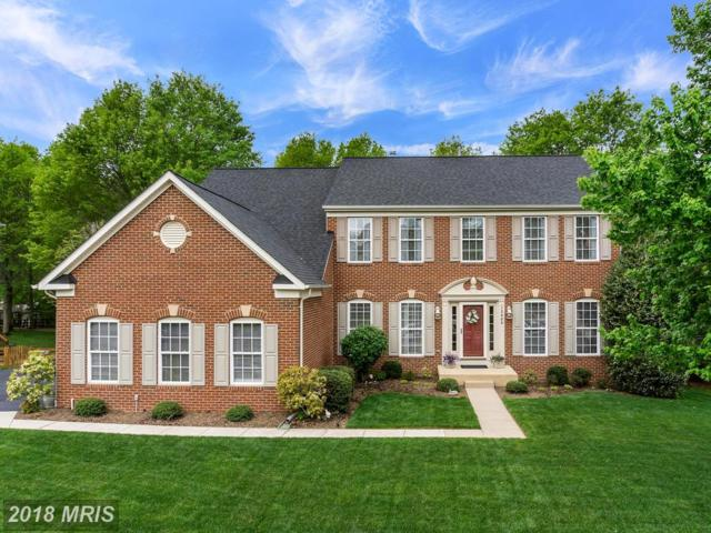 13609 Heritage Farms Drive, Gainesville, VA 20155 (#PW10236004) :: Green Tree Realty