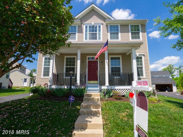 14298 Sharpshinned Drive, Gainesville, VA 20155 (#PW10238676) :: The Withrow Group at Long & Foster