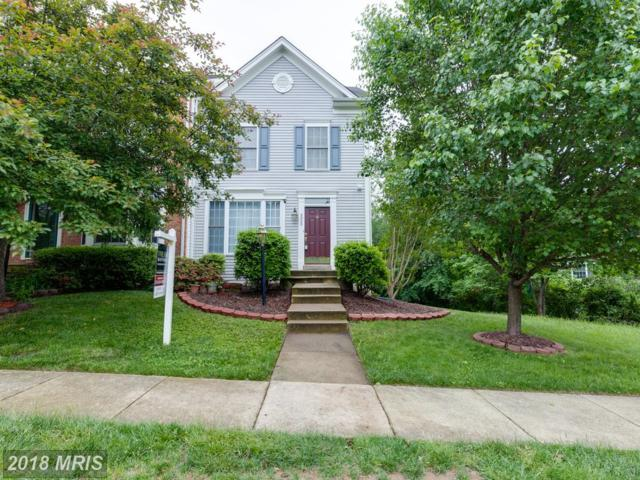 8905 Stable Forest Place, Bristow, VA 20136 (#PW10240882) :: Circadian Realty Group