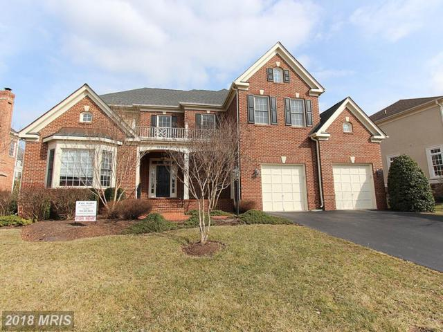 15709 Spyglass Hill Loop, Gainesville, VA 20155 (#PW10241149) :: The Gus Anthony Team