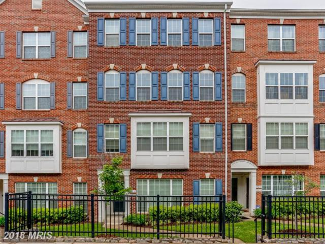 15231 Leicestershire Street #130, Woodbridge, VA 22191 (#PW10245976) :: Keller Williams Pat Hiban Real Estate Group