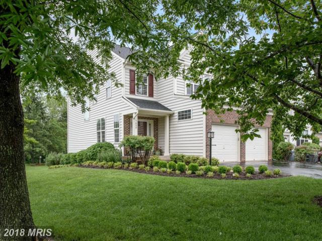7650 Covewood Court, Gainesville, VA 20155 (#PW10247522) :: Pearson Smith Realty