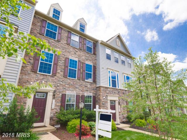 13558 Handel Place, Gainesville, VA 20155 (#PW10248296) :: The Hagarty Real Estate Team