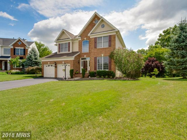 5693 Olympia Fields Place, Haymarket, VA 20169 (#PW10248653) :: Wes Peters Group