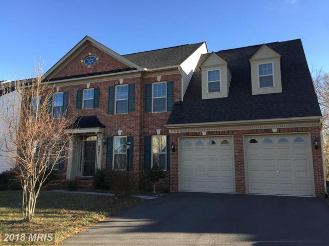 8841 Brown Thrasher Court, Gainesville, VA 20155 (MLS #PW10250915) :: Explore Realty Group
