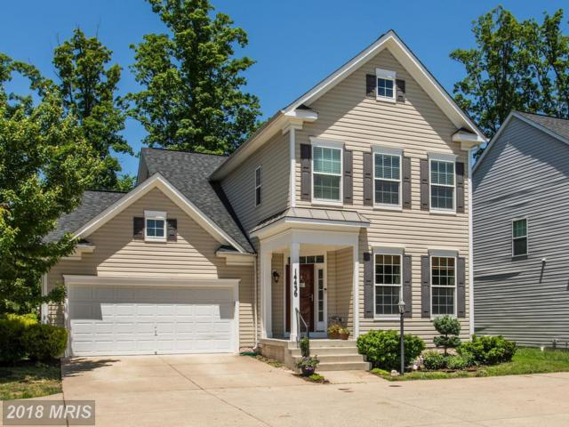 14436 Sharpshinned Drive, Gainesville, VA 20155 (MLS #PW10252226) :: Explore Realty Group