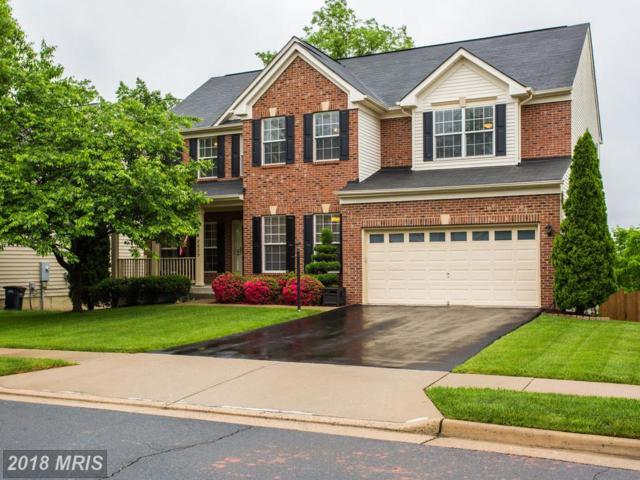 8625 Placid Lake Court, Bristow, VA 20136 (#PW10252886) :: TVRG Homes