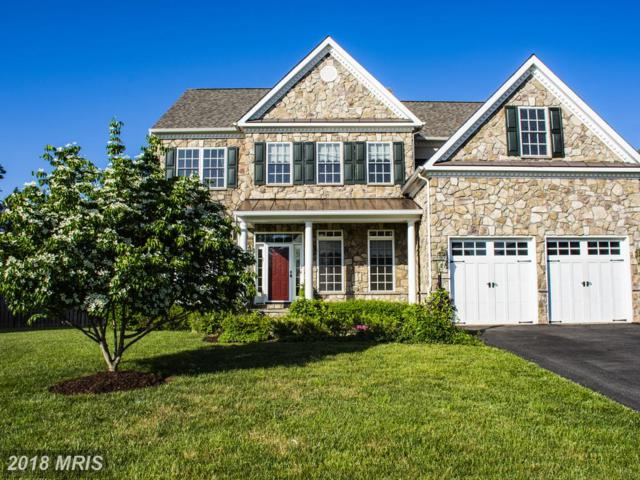 14068 Baneberry Circle, Manassas, VA 20112 (MLS #PW10255384) :: Explore Realty Group