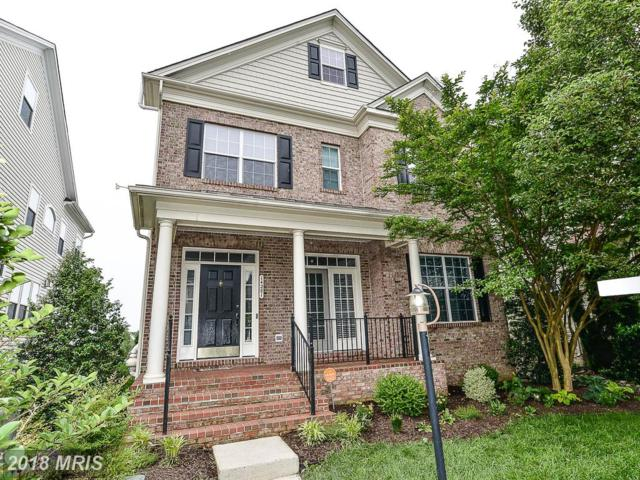 14281 Catbird Drive, Gainesville, VA 20155 (#PW10255467) :: The Withrow Group at Long & Foster