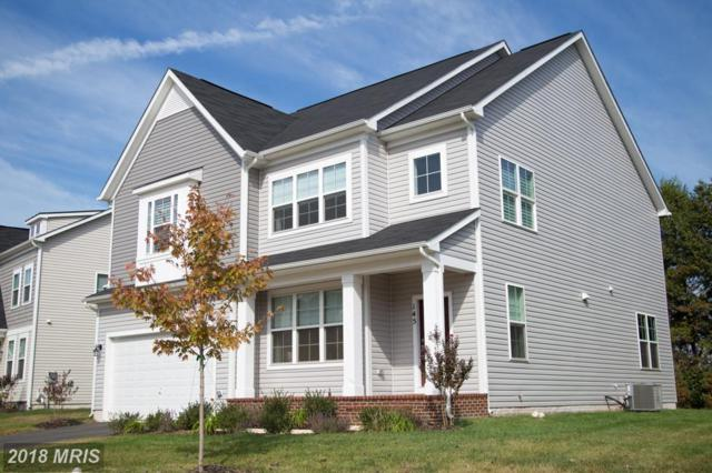 Woods View Dr, Dumfries, VA 22026 (#PW10258271) :: The Bob & Ronna Group