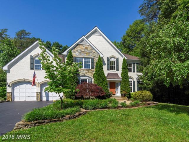 11840 Coloriver Road, Manassas, VA 20112 (#PW10258451) :: RE/MAX Executives