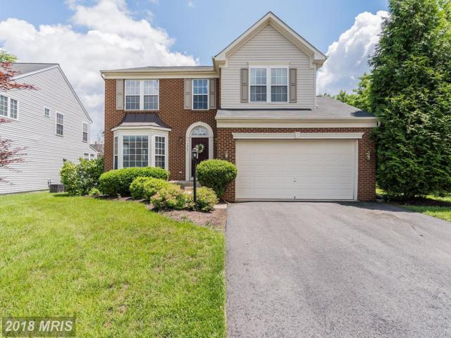 7241 Bladen Place, Gainesville, VA 20155 (MLS #PW10261232) :: Explore Realty Group
