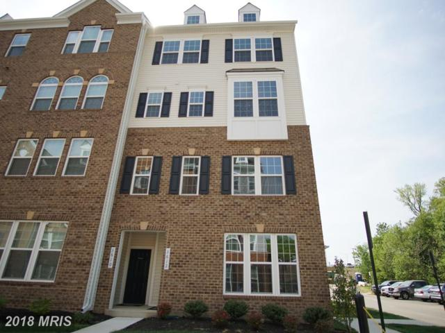 3612 Briarwood Drive, Dumfries, VA 22026 (#PW10262642) :: The Withrow Group at Long & Foster
