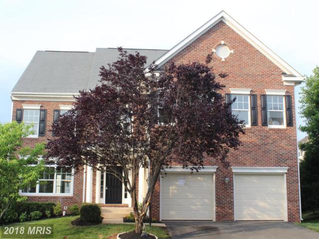 8119 Breezy Knoll Drive, Manassas, VA 20111 (#PW10265672) :: RE/MAX Executives