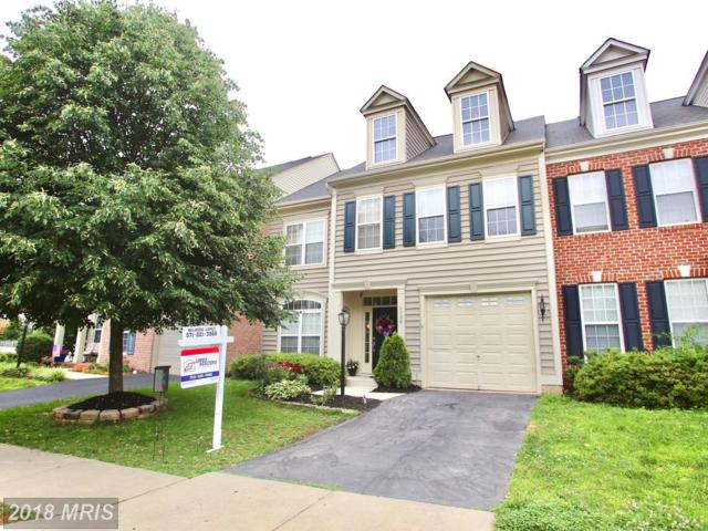 9206 Cascade Falls Drive, Bristow, VA 20136 (#PW10266569) :: Circadian Realty Group