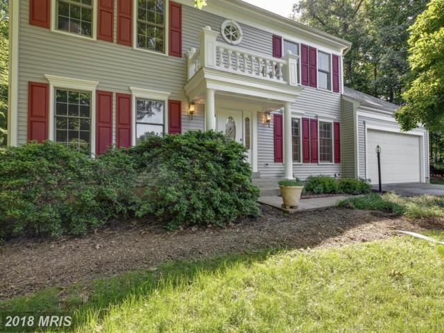 11059 Stonebrook Drive, Manassas, VA 20112 (#PW10267263) :: Bob Lucido Team of Keller Williams Integrity