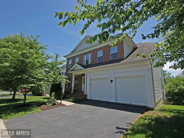 8872 Yellow Hammer Drive, Gainesville, VA 20155 (#PW10267688) :: Advance Realty Bel Air, Inc