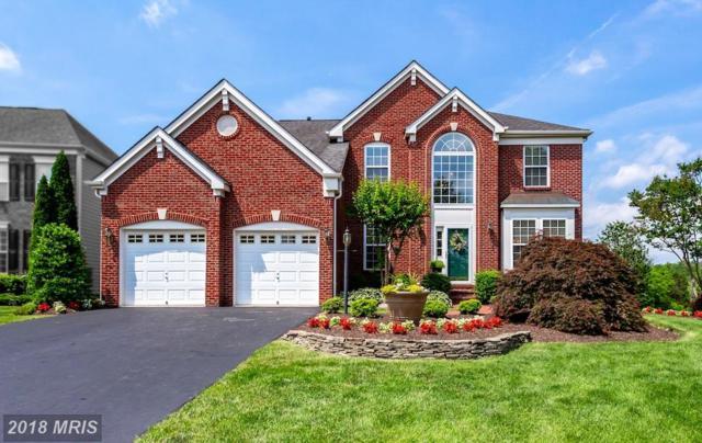 13823 Piedmont Vista Drive, Haymarket, VA 20169 (#PW10269278) :: RE/MAX Cornerstone Realty
