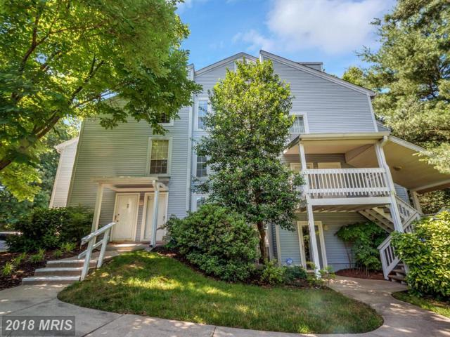 12122 Cardamom Drive #12122, Woodbridge, VA 22192 (#PW10269617) :: Charis Realty Group