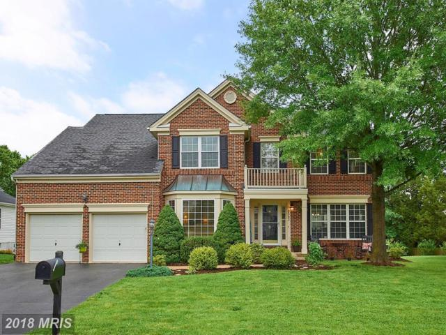 8563 Yearling Court, Gainesville, VA 20155 (#PW10269690) :: Pearson Smith Realty
