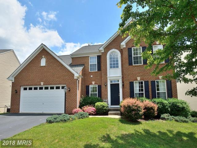 14189 Clatterbuck Loop, Gainesville, VA 20155 (#PW10269728) :: Advance Realty Bel Air, Inc