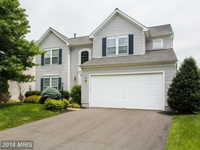 7318 Early Marker Court, Gainesville, VA 20155 (#PW10269859) :: The Bob & Ronna Group
