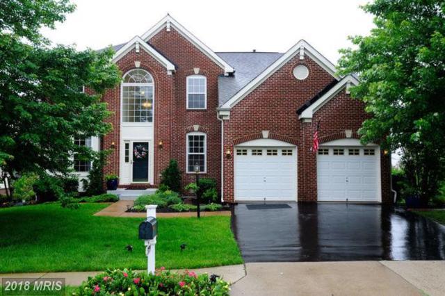 13799 Piedmont Vista Drive, Haymarket, VA 20169 (#PW10271688) :: RE/MAX Cornerstone Realty