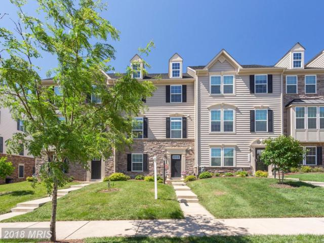 13557 Handel Place, Gainesville, VA 20155 (#PW10272327) :: Pearson Smith Realty