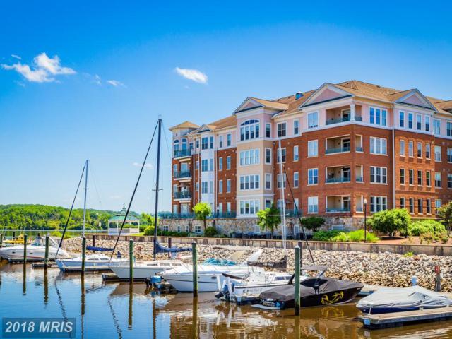 500 Belmont Bay Drive #204, Woodbridge, VA 22191 (#PW10274606) :: RE/MAX Executives