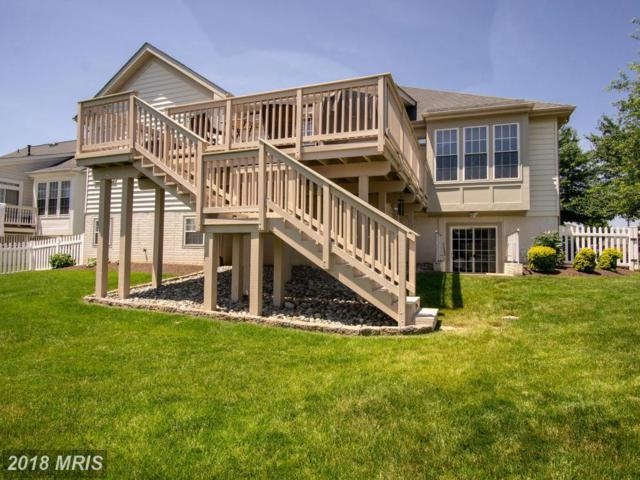 6801 Tred Avon Place, Gainesville, VA 20155 (#PW10274645) :: The Gus Anthony Team