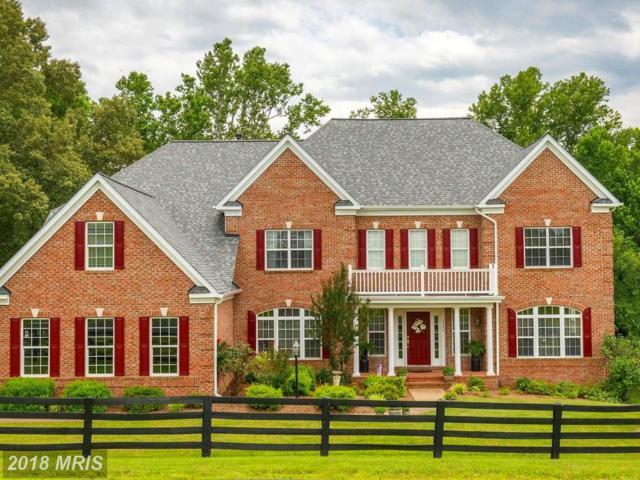 13500 Saratoga Springs Way, Nokesville, VA 20181 (#PW10274697) :: Jacobs & Co. Real Estate