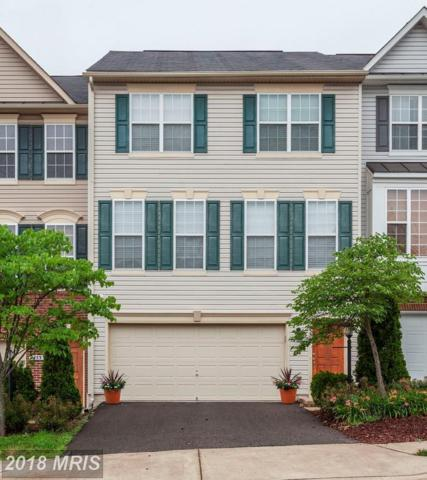 2455 Battery Hill Circle, Woodbridge, VA 22191 (#PW10274952) :: Network Realty Group