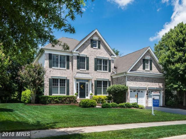 5414 Dabneys Mill Court, Haymarket, VA 20169 (MLS #PW10275008) :: Explore Realty Group