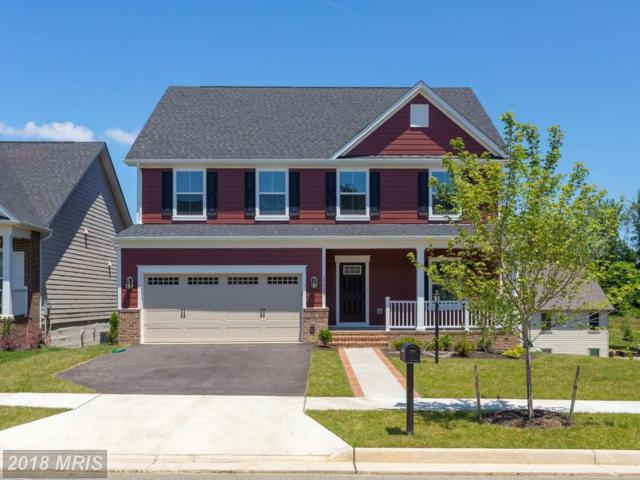 17529 Spring Cress Drive, Dumfries, VA 22026 (#PW10275648) :: The Gus Anthony Team