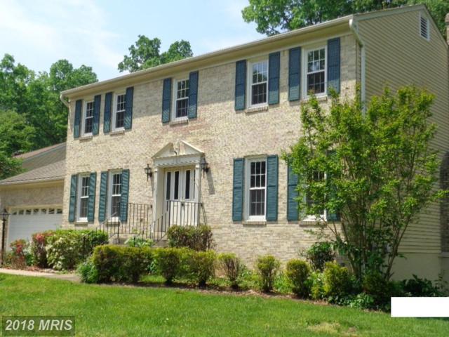 15818 Vista Drive, Dumfries, VA 22025 (#PW10275763) :: RE/MAX Executives