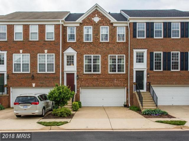 15035 Clementine Way, Haymarket, VA 20169 (#PW10276800) :: Advance Realty Bel Air, Inc
