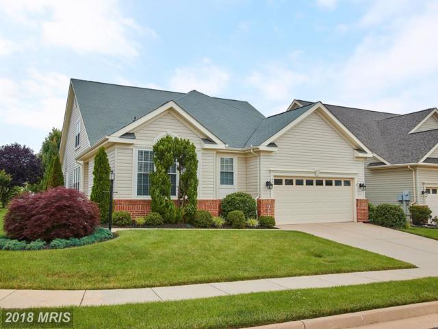 6068 Gallant Fox Court, Gainesville, VA 20155 (#PW10277304) :: Keller Williams Pat Hiban Real Estate Group
