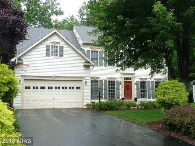 13194 Amblewood Drive, Manassas, VA 20112 (#PW10278517) :: Samantha Bendigo
