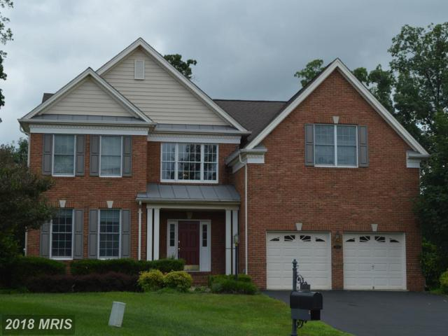 5904 Interlachen Court, Haymarket, VA 20169 (MLS #PW10279050) :: Explore Realty Group