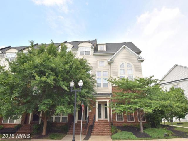 14446 Village High Street, Gainesville, VA 20155 (#PW10279153) :: Network Realty Group