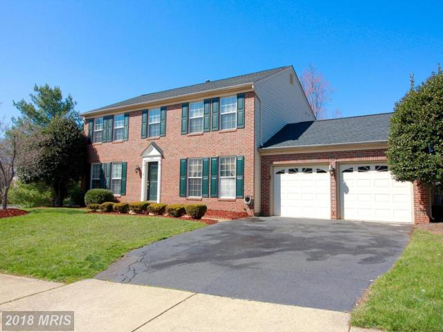 8100 Station Road, Manassas, VA 20111 (#PW10279264) :: Network Realty Group