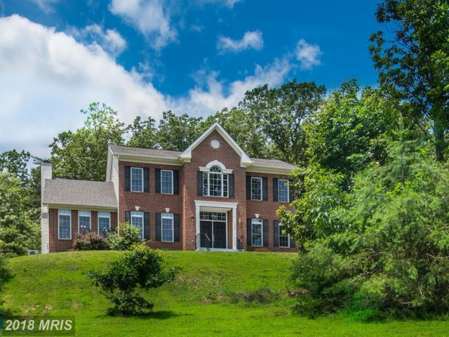 1406 Mercer Road, Haymarket, VA 20169 (#PW10279329) :: RE/MAX Gateway