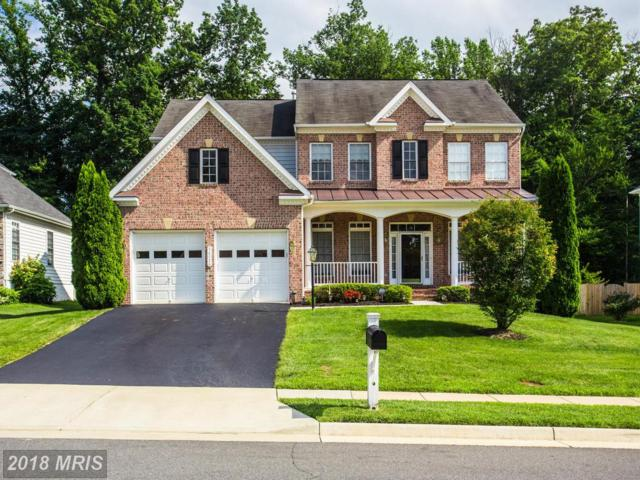 14016 Baneberry Circle, Manassas, VA 20112 (MLS #PW10282995) :: Explore Realty Group