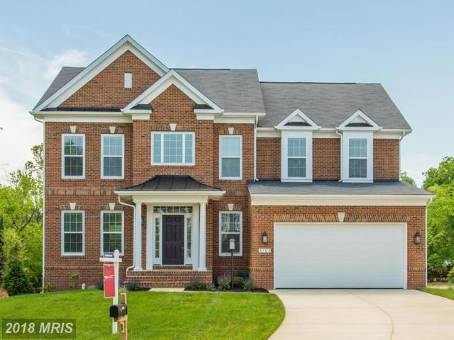 8103 Levi Court, Manassas, VA 20111 (MLS #PW10284419) :: Explore Realty Group